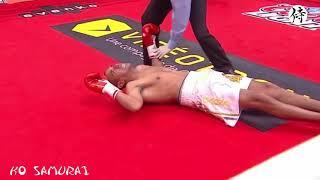 【芸術!】世界ボクシング史に残るカウンター 25連発