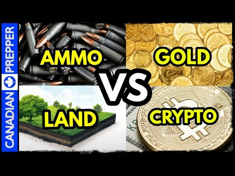 food,-ammo,-land,-gold,-bitcoin-or-stocks?