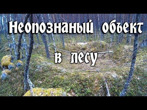 Загадочные сооружения в лесу