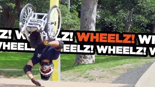 EPIC Skatepark Session With Wheelz