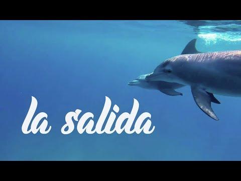 The PRONOIA / La Salida