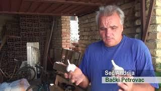 EkoBooster 2 , prehrana preko lista, Backi Petrovac, paprika, luk Poljoprivreda - povrtarstvo