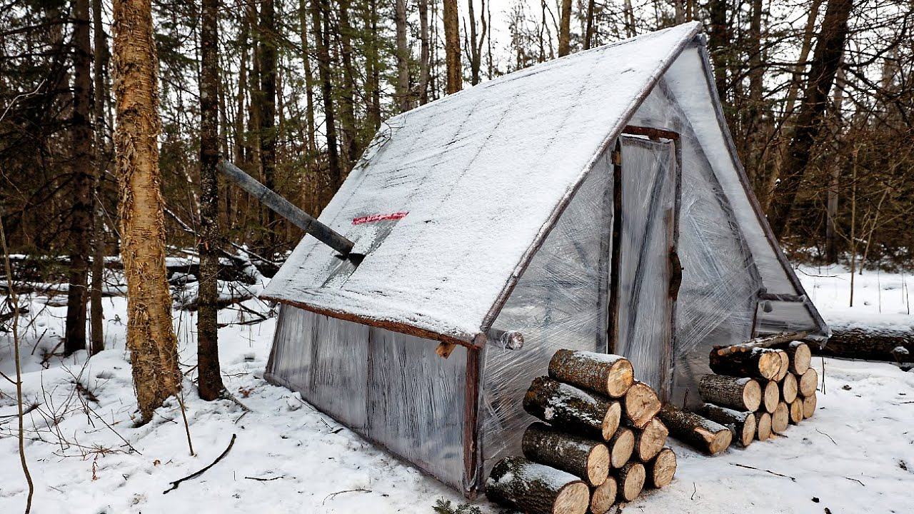 BUILDING a Micro Cabin on an EXTREME BUDGET (anyone can do this!) | ASMR (Silent)