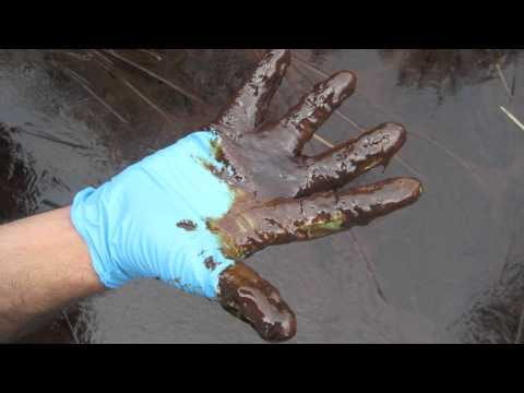 British Petroleum's Oil Spill - Short Documentary