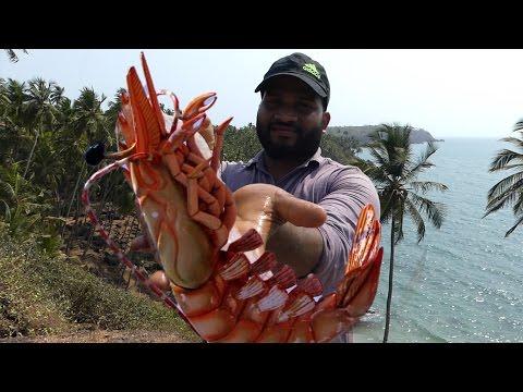 Big Shrimp Fishing   Prawns Fishing   Prawns Catching Videos street food thumbnail