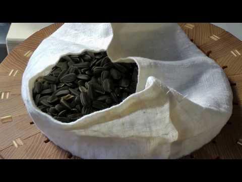 Как выжать масло из подсолнуха в домашних условиях