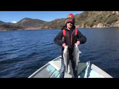 Silverwood Lake Fishing 3/4/18 Trolling The Wood Hunting For Jailbirds