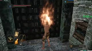 DS2 All Achievements Speedrun in 6:05:57
