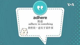 学个词 ---adhere