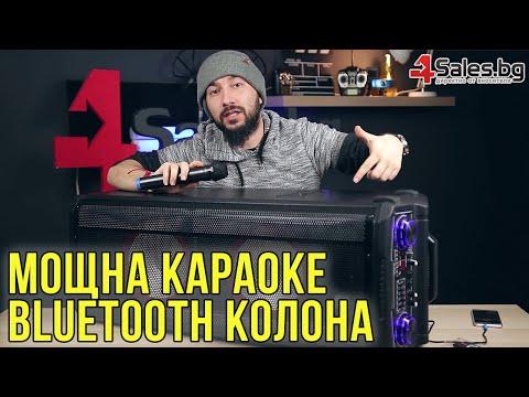 Avcrowns HS-TD1070 Парти спийкър с Bluetooth безжичен микрофон - 2X10 инча 17
