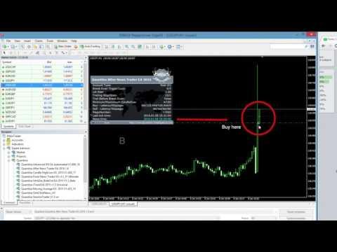 Quantina forex news trader ea download
