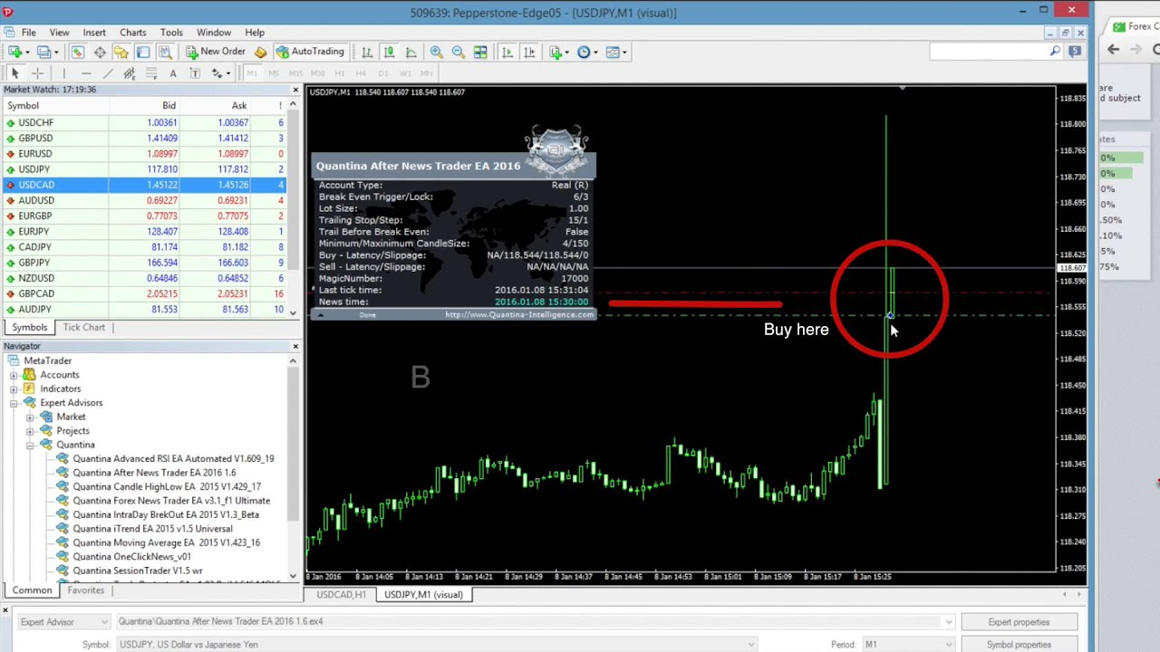 Quantina forex news trader ea review
