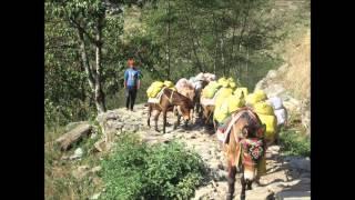 Mardi Himal  Day 9 -- Ghandruk to Pokhara