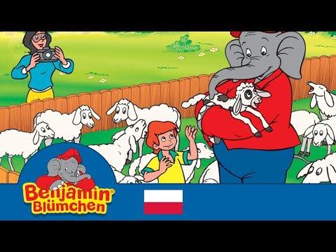 Słon Benjamin - Zoo dla pieszczochów po polsku - Full episode in Polish