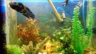 Светодиодная LED подсветка для аквариума своими руками(Светодиодная аля LED подсветка для аквариума своими руками. Сделал в целом на 5-7 минут. Освещает в целом как..., 2014-06-09T00:01:19.000Z)