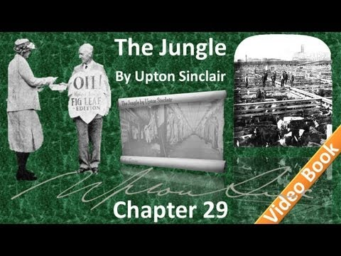 Chapter 29 - The Jungle by Upton Sinclair
