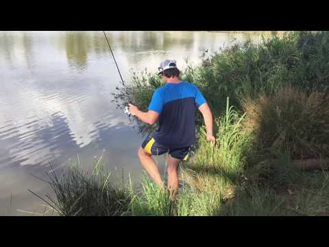 Bass Fishing At Struben Dam, South Africa