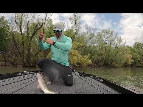 Flipping Bushes On Kentucky Lake