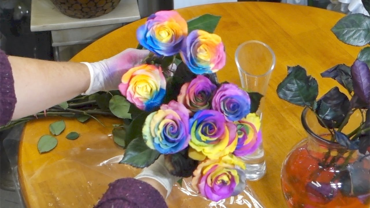How to Make a Rainbow Rose pics