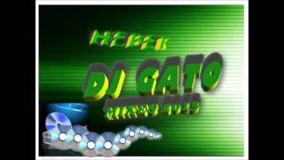 reggaeton mix 2016 carnaval dj gato