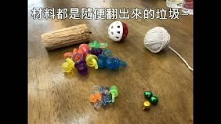 馬克先生的鸚鵡教室 抖鸚~ 來簡單做鸚鵡玩具