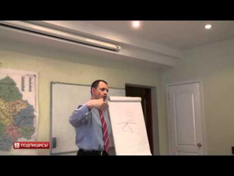 Ручные карликовые мартышки - продажа ручных обезьян - YouTube