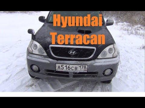 Hyundai Terracan Корейское насекомое
