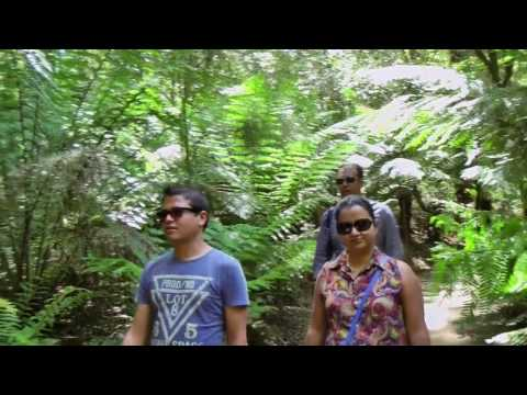 Great Ocean Road, Australia: Trip of a Lifetime