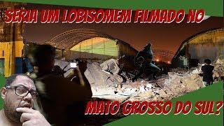 Seria um lobisomem filmado no Mato Grosso do Sul?