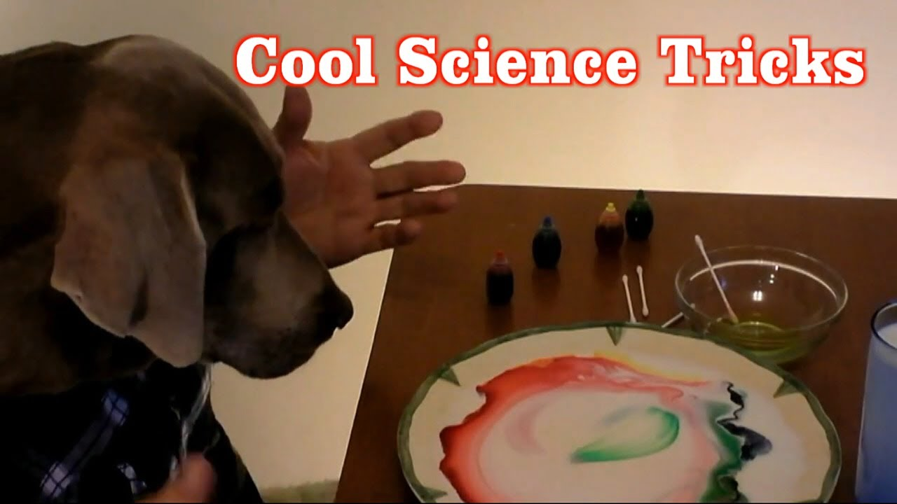 2 Super Cool Science Experiments You Can Do at Home with Household ...