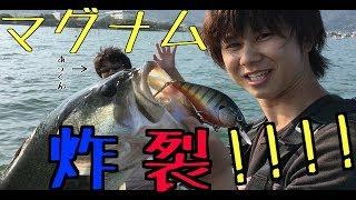 どうも♪H.M フィッシングhayatoです♪ 初秋の琵琶湖にマグナム炸裂しまし...