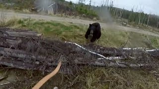 Bear Attacks Man And Woman In Tent