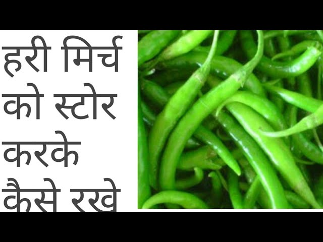 How to preserve green chillies for long time