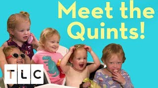 Video Meet the Quints! | Season 3 | Outdaughtered download MP3, 3GP, MP4, WEBM, AVI, FLV November 2018