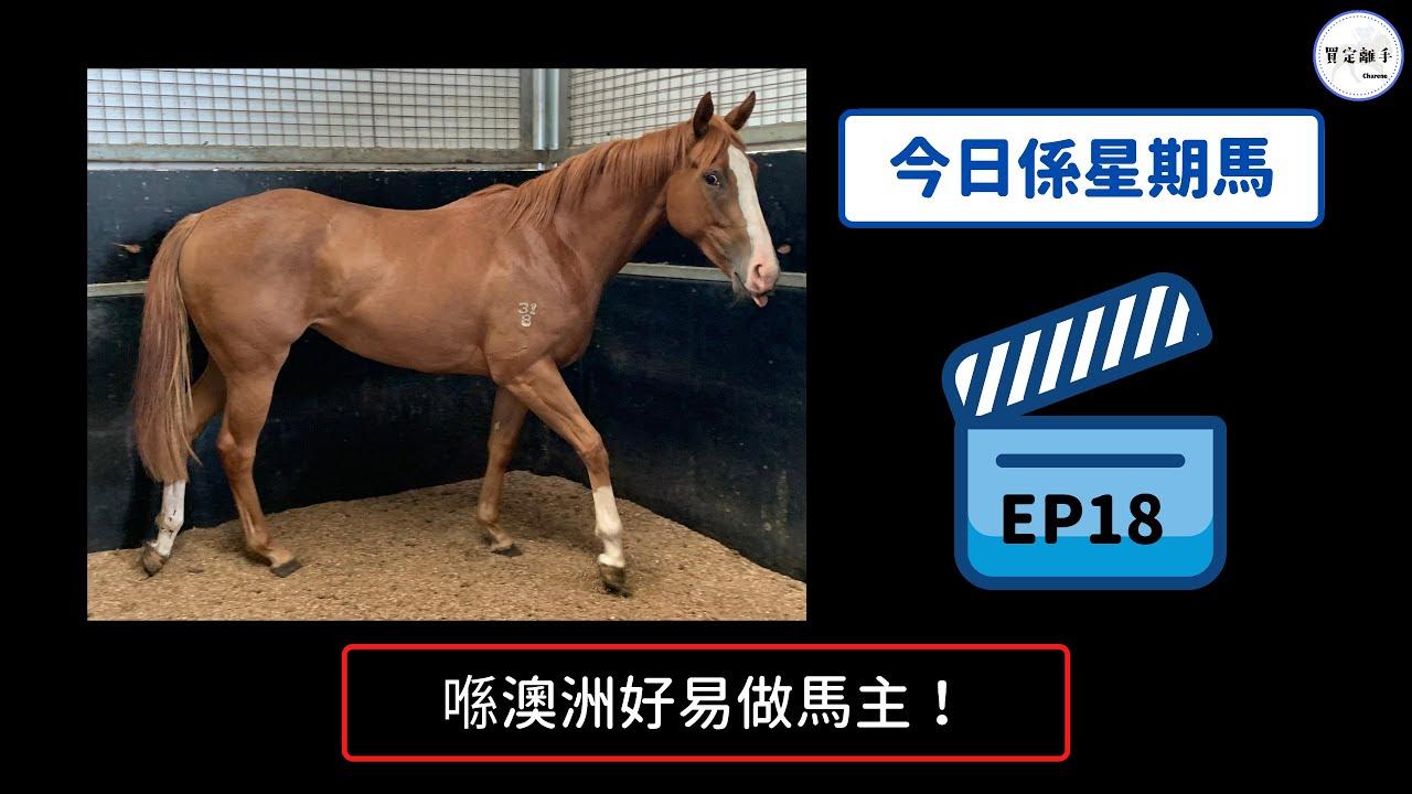 【今日係星期馬 S1EP18】我隻馬女贏咗「試閘」,分享在澳洲成為馬主心得,人人都可以做馬主