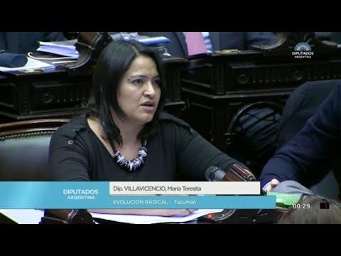 Diputada Villavicencio María Teresita - Sesión 13-06-2018 - PL