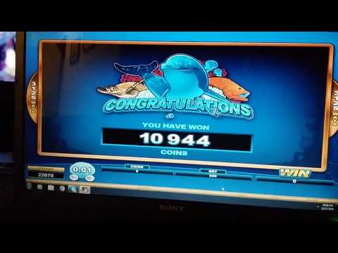 Nice Little Win on Dolphin Coast @ Spin Palace Online Slots