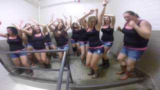 House Party Line Dance Featuring Boot Boogie Babes