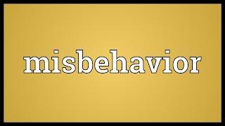 Misbehavior Meaning