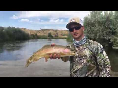 August Hopper Fishing On Gray Reef