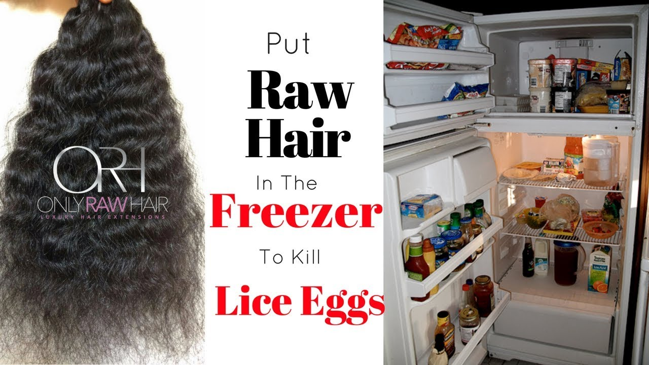 Get Raw Hair Ready For Sale Put It In The Freezer To Kill Lice Eggs