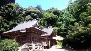美祢市の文化財 厚保町 神功皇后神社の社叢