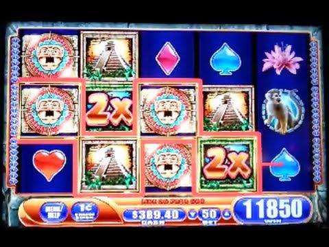 Slot jungle wild