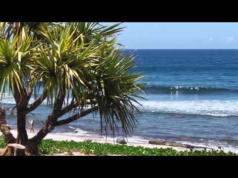 ILE DE LA REUNION GRAND ANSE.mov