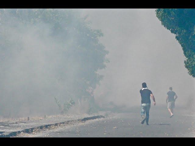 Cento Incendi In Campania Quasi Tutti Dolosi Mancano I