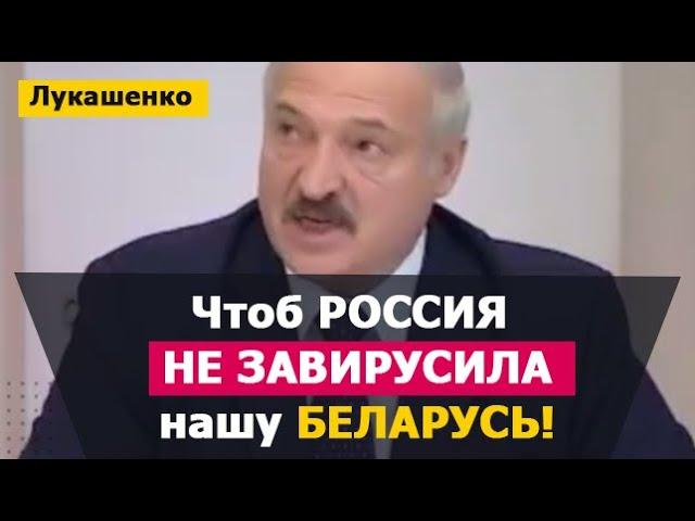 Лукашенко: Чтоб Россия не завирусила Беларусь. Новости Россия 2020