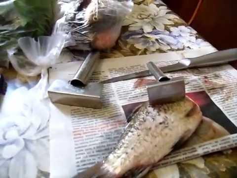 мечта рыболова чистилка