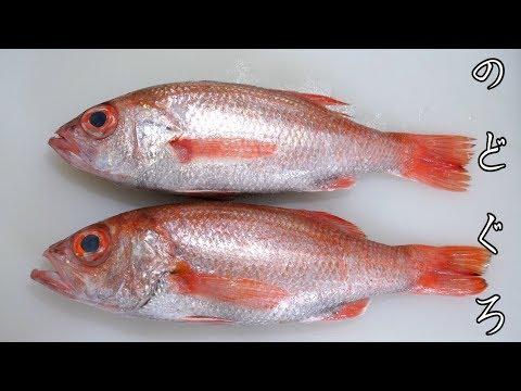 全身脂まみれ。真っ赤に染まる高級深海魚のおいしい食べ方はコレ。控えめに言って神。