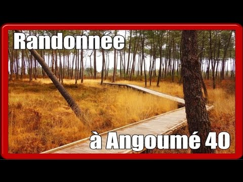 Randonnée Angoumé