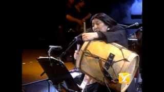 Mercedes Sosa, Entre a Mi Pago sin Golpear, Festival de Viña 1993